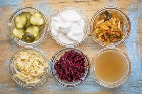 lacto-fermented food