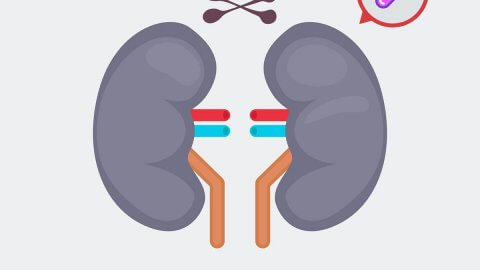PPIs Linked to Chronic Kidney Disease