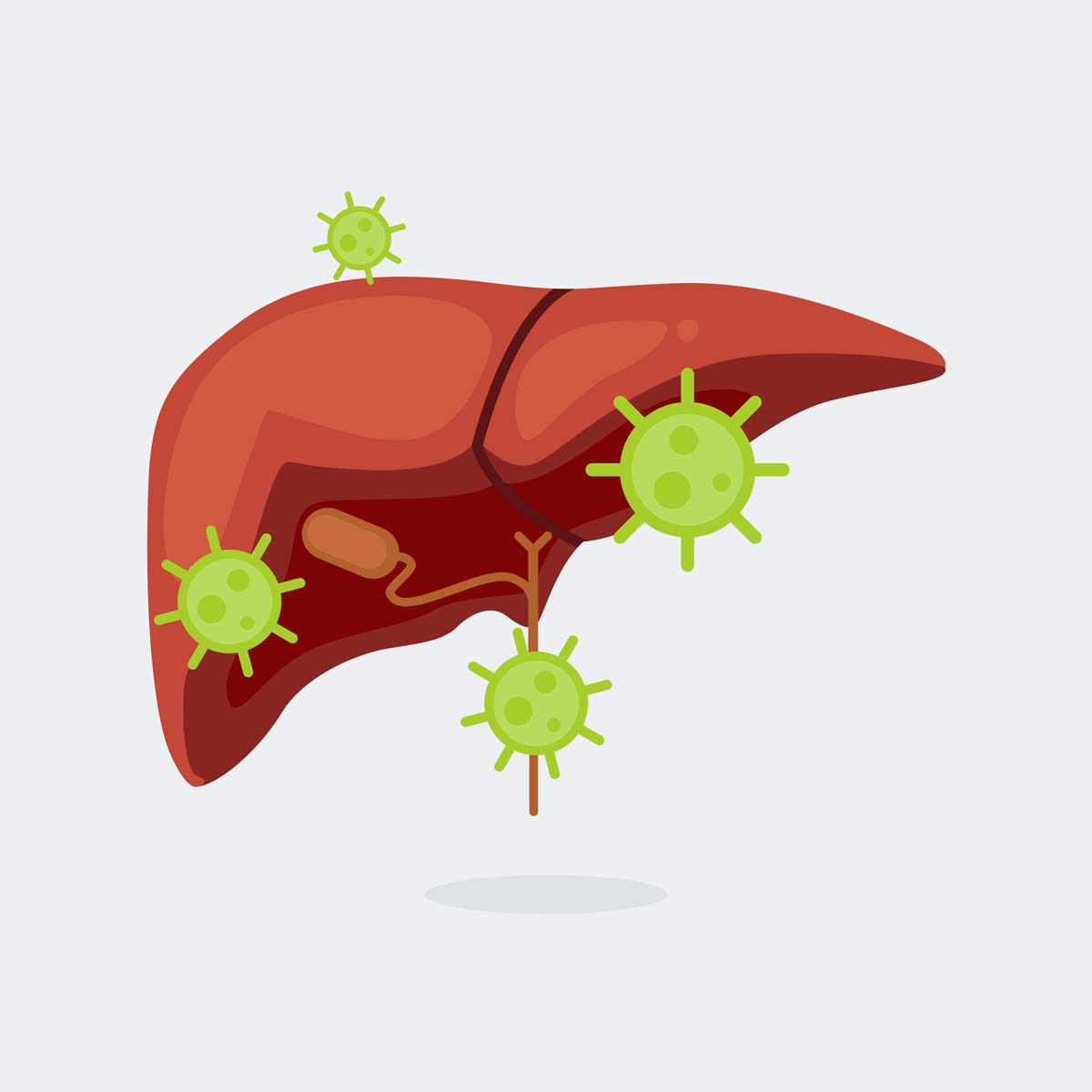 PPIs, gut bacteria, liver damage