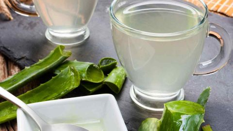 aloe vera apple cider vinegar drink for acid reflux