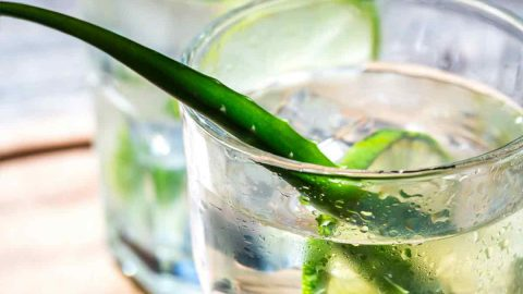 aloe vera coconut water drink for acid reflux