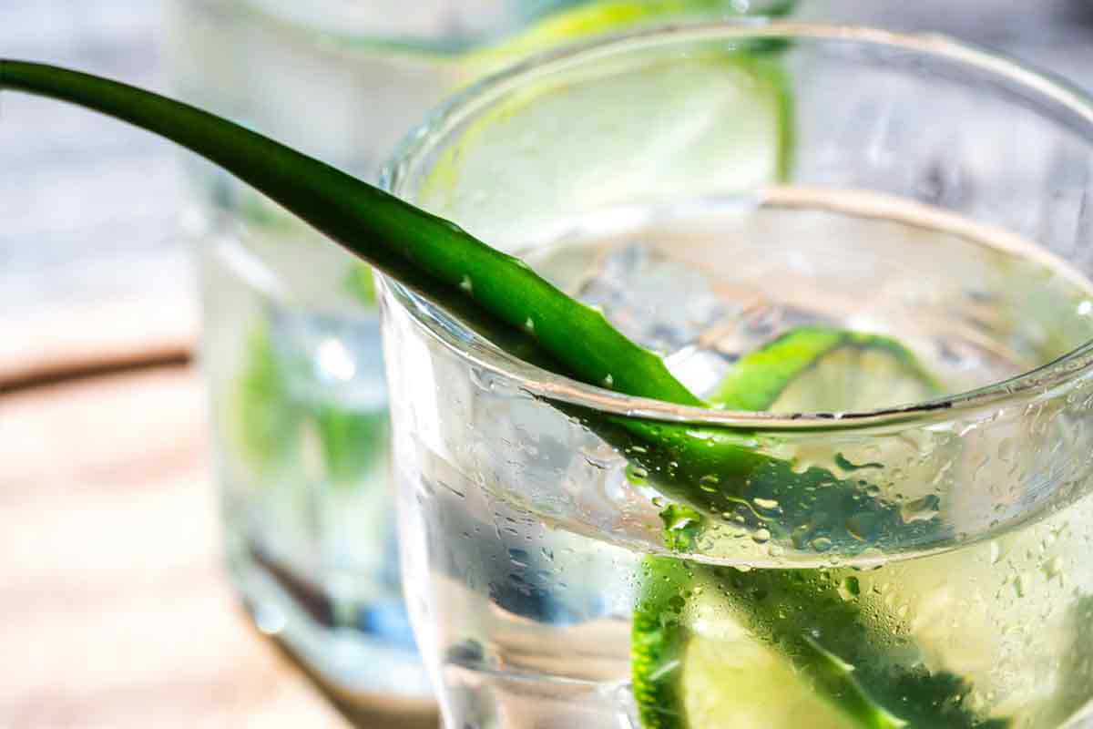 Aloe Vera Drink Recipe Honey